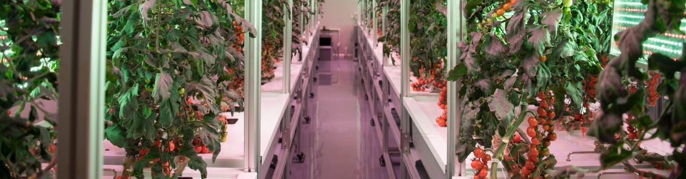 AEtrium System Aeroponic Grow Environment