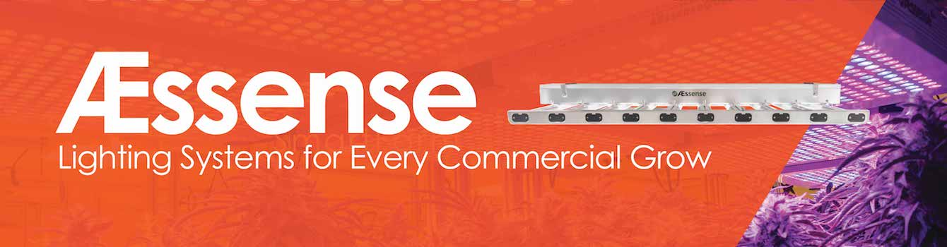 AEssense Lighting Systems