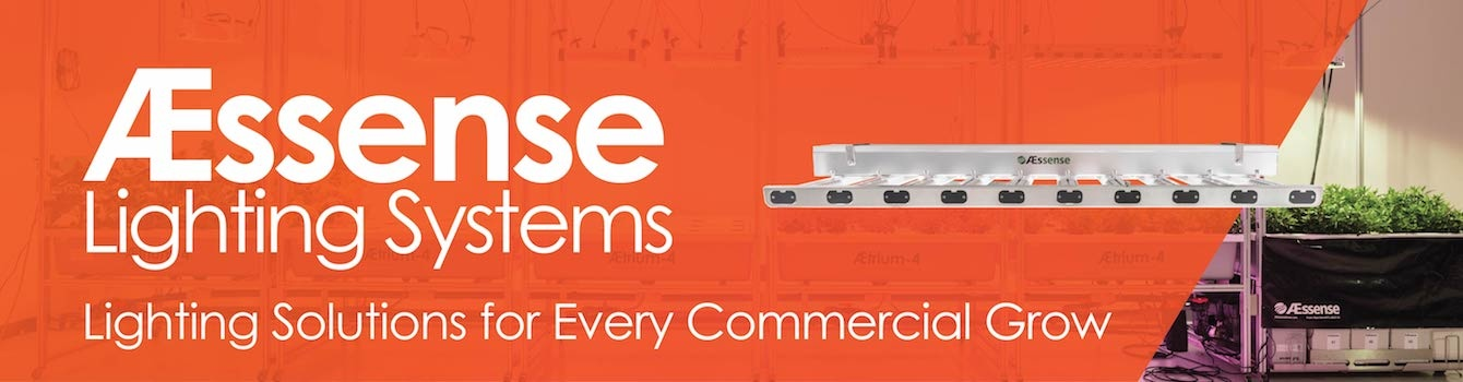 AEssense Lighting Solutions