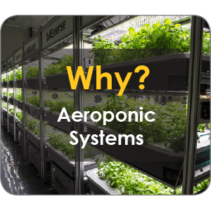 Why Aeroponic Systems?