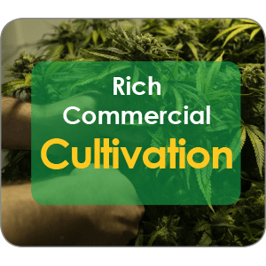 Grow Rich Commercial Cultivation