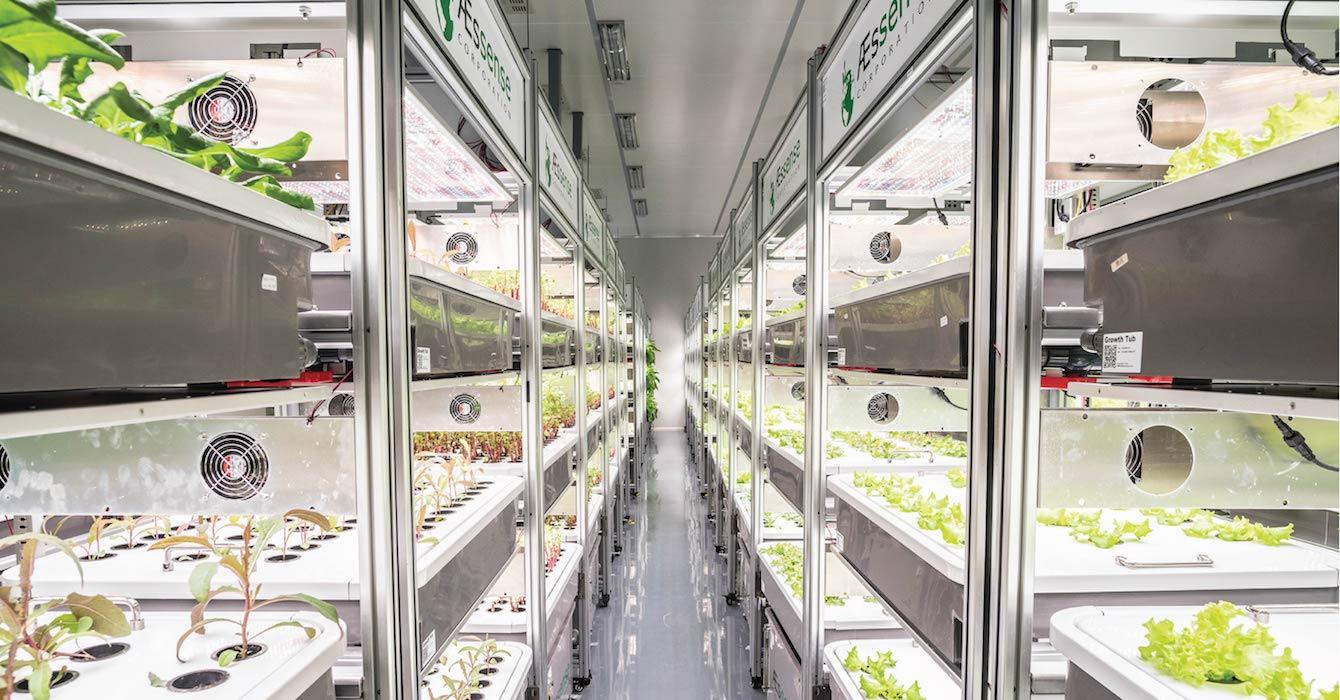 AEssensegrows AEtrium-2 Grow Clean Room