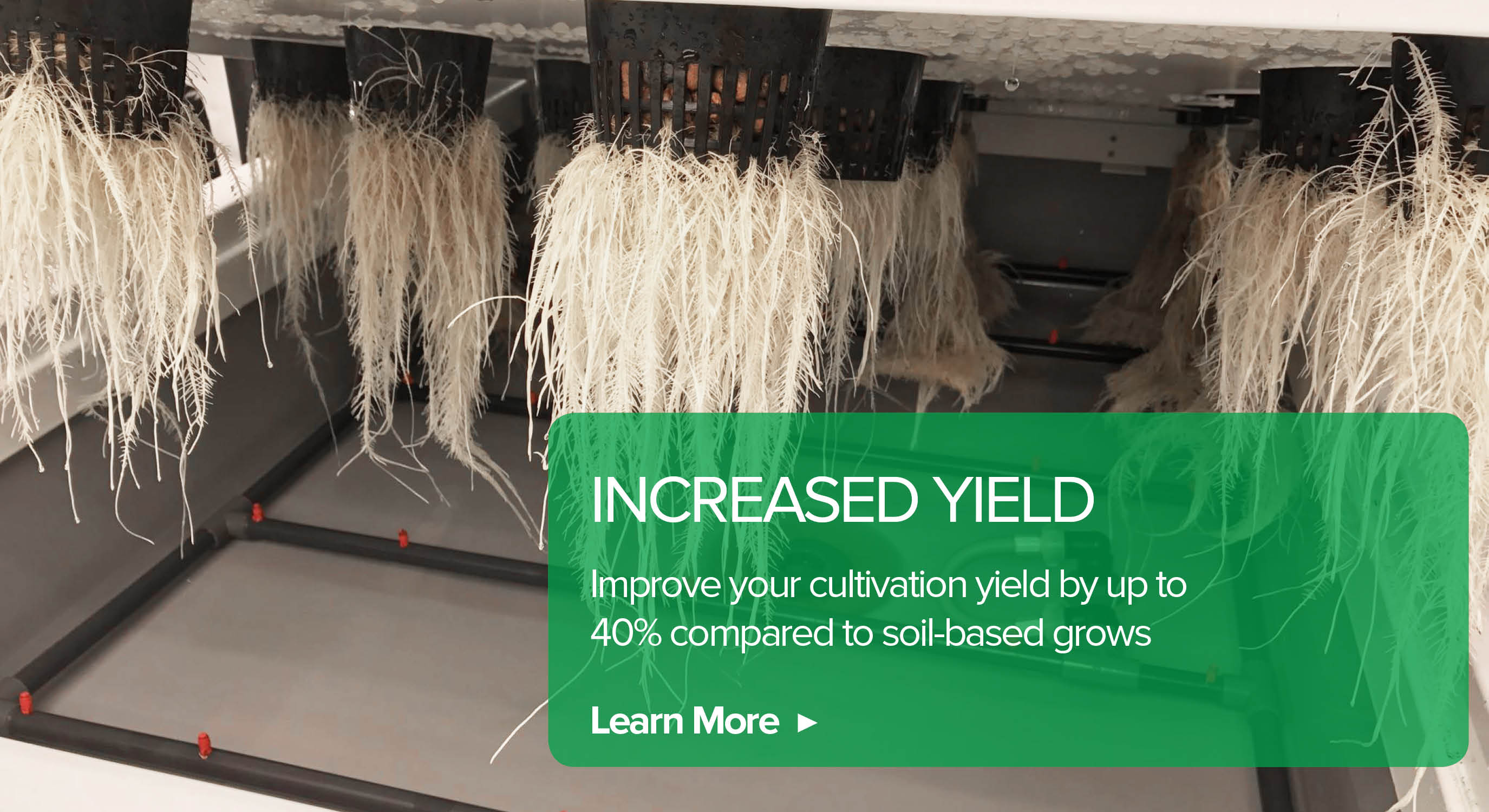 Increase Yield 40%+