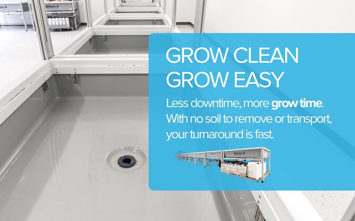 Grow Clean Grow Easy Ditch The Dirt