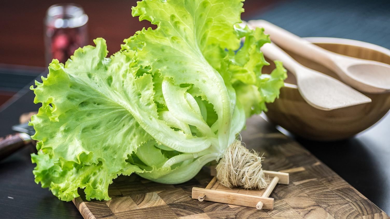 AEssenseGrows Green Floral Leaf Lettuce