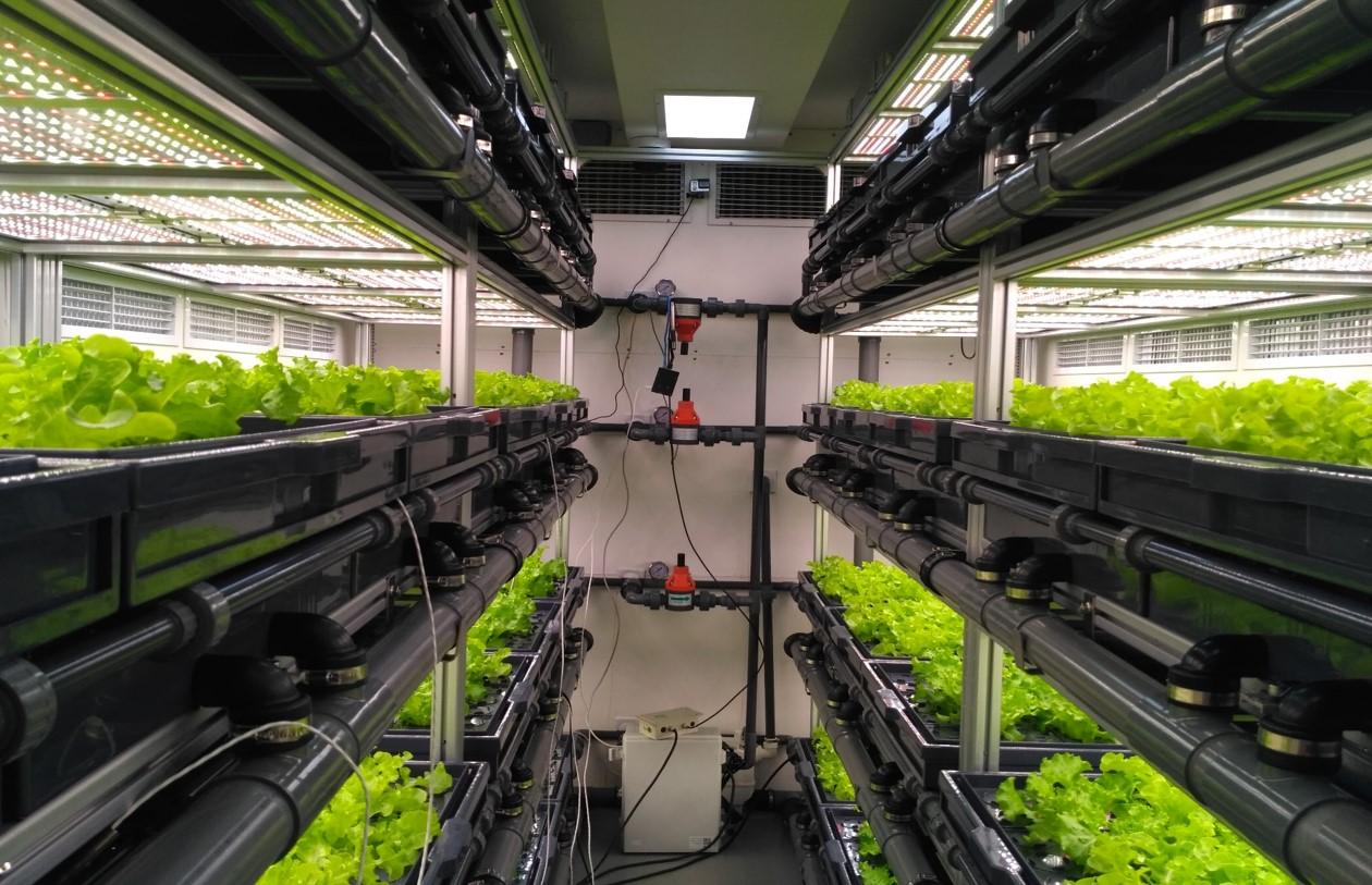 AEtrium SmartFarm Container Lettuce