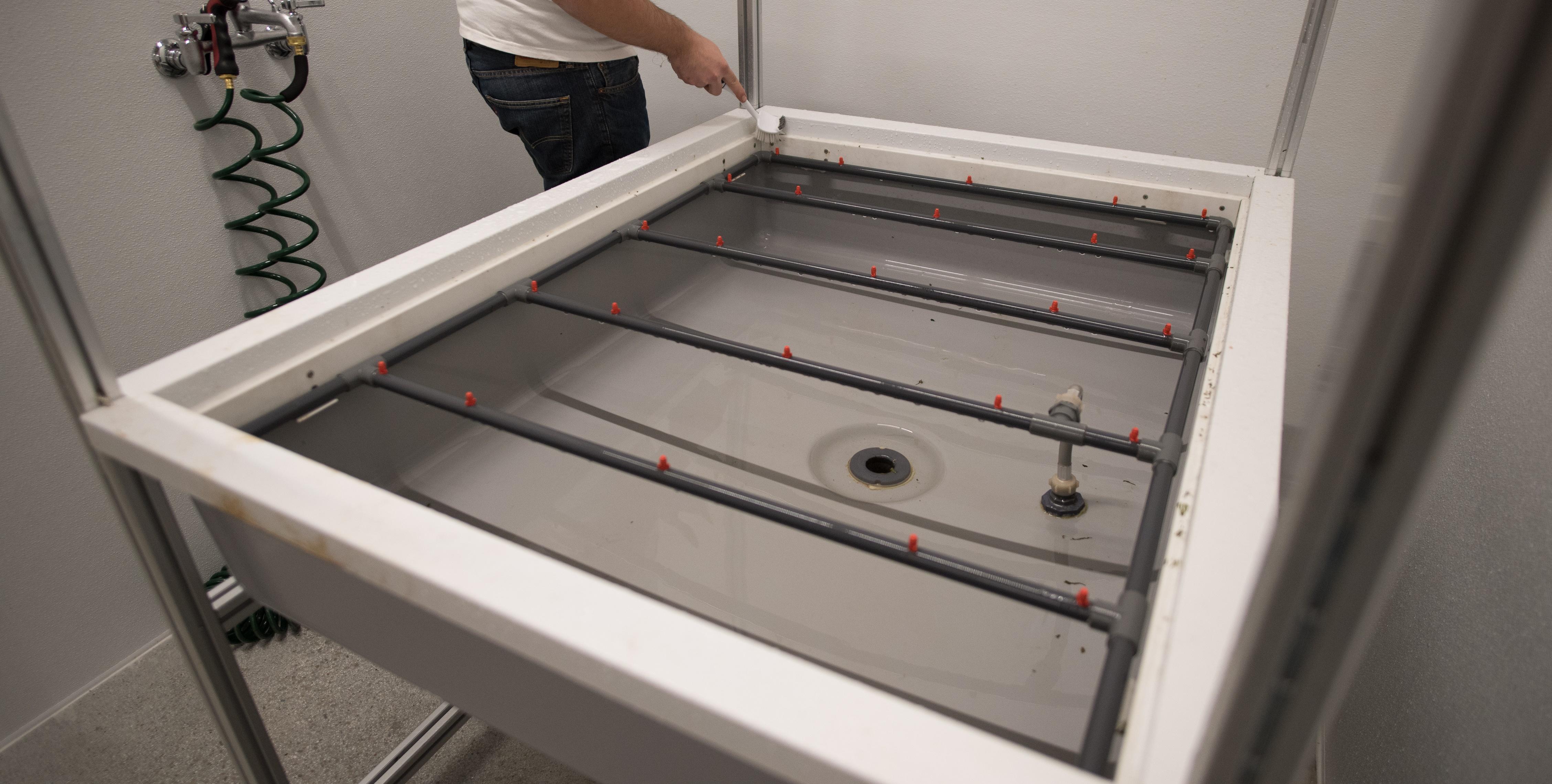 Clean Tub 1.jpg
