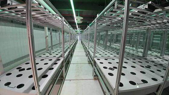High Volume AEtrium-4 Hydroponic System Production Lines with Accordion Rails