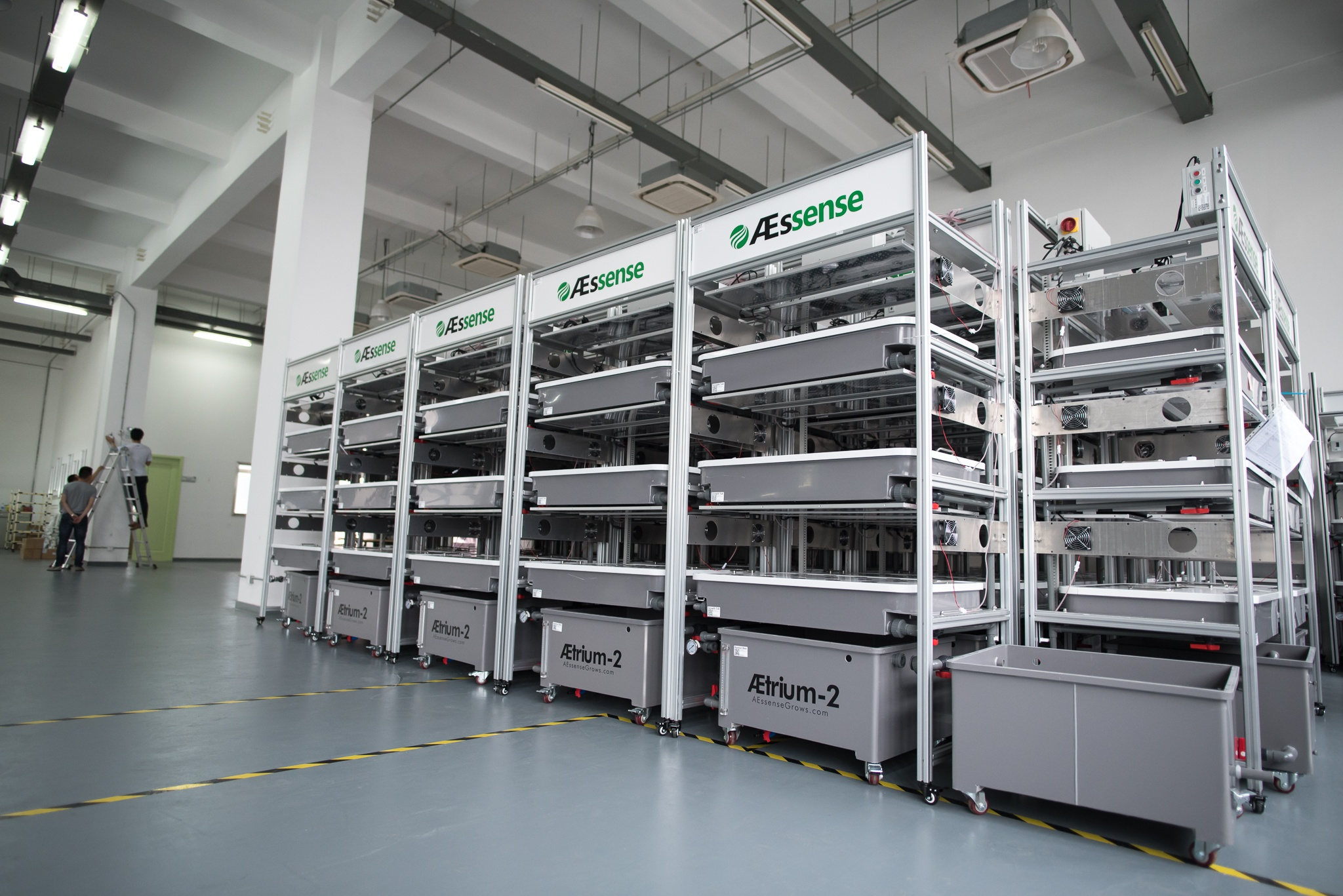 AEssenseGrows Fresh AEtrium-2 Machine Rows
