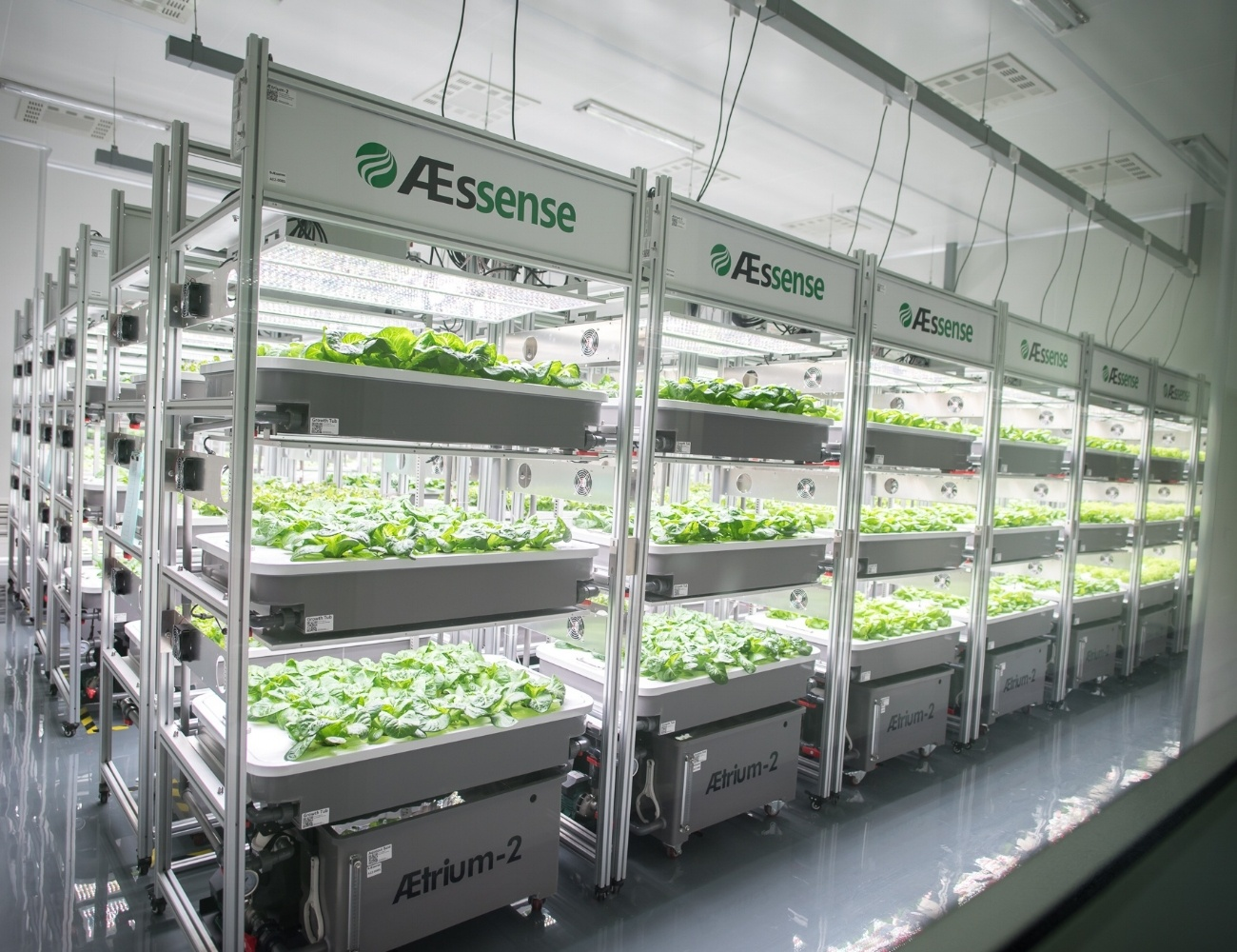 AEtrium-2 Vertical Farming in Production