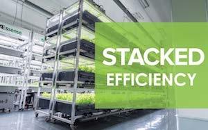 Smart Farm Lettuce/Herbs