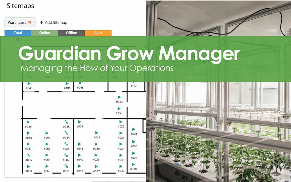 Guardian Grow Manager - Managing Business Operations.jpg