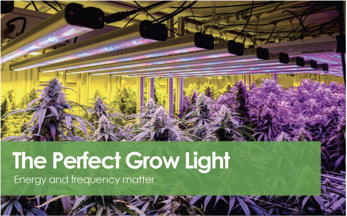 The Perfect Indoor Grow Light