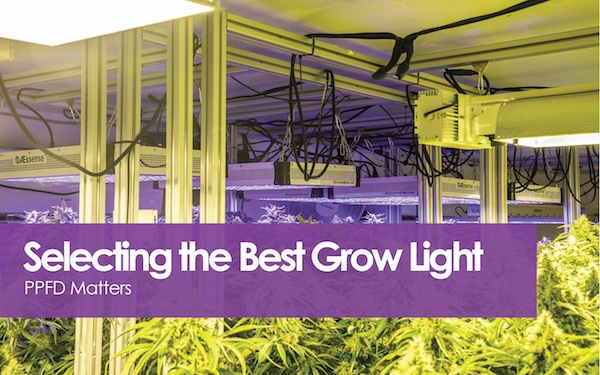 Selecting The Best Grow Light