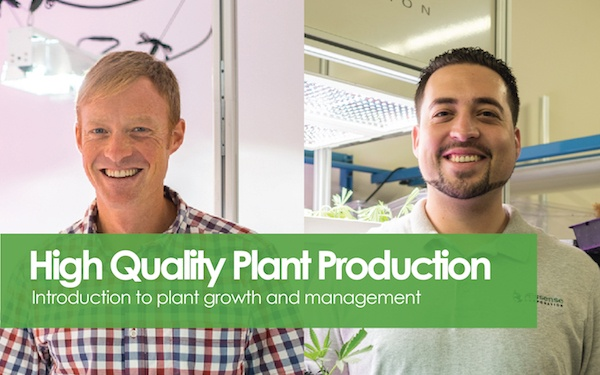 High Quality Plant Production.jpg