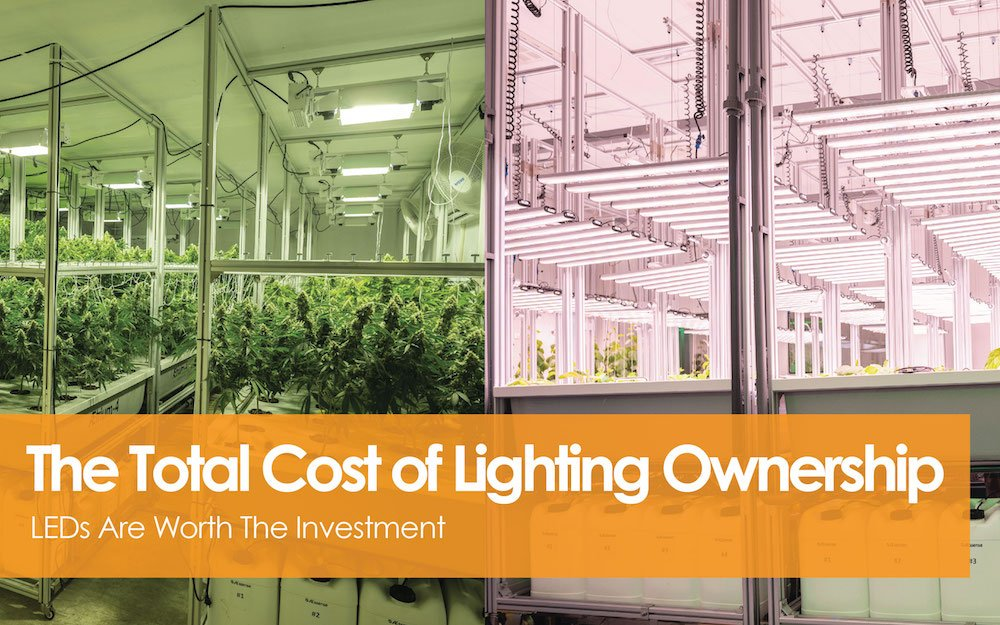 The Total Cost Of Lighting Ownership