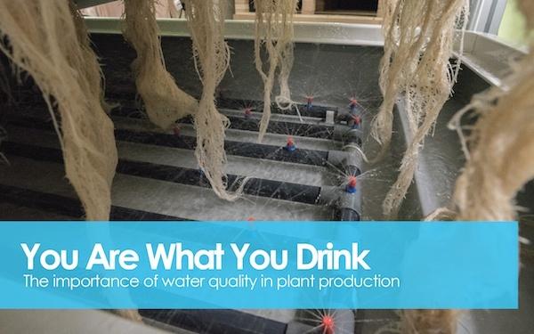 Water Quality v2-01.jpg